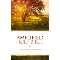 Amplified Bible (Soft Cover)