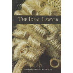 The Ideal Lawyer