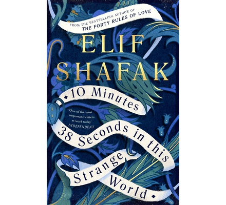 10 Minutes 38 seconds in This Strange World (Shafak)