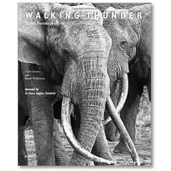 Walking Thunder: In the Footsteps of the African