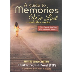 A Guide to Memories We Lost and other stories (climax)