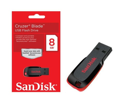 Sandisk 8GB Flash Disk