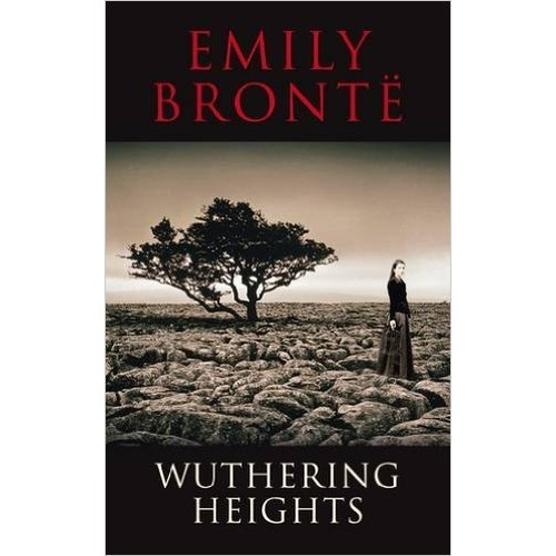 romantic relationships in emily brontes wuthering heights