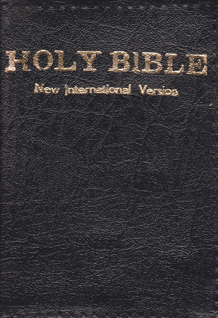 Holy Bible NIV Mini Pocket (Zipped) | Books, Stationery, Computers, Laptops  and more  Buy online and get free delivery on orders above Ksh  2,000