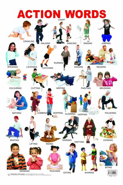 Action Words Chart Laminated Dl Text Book Centre