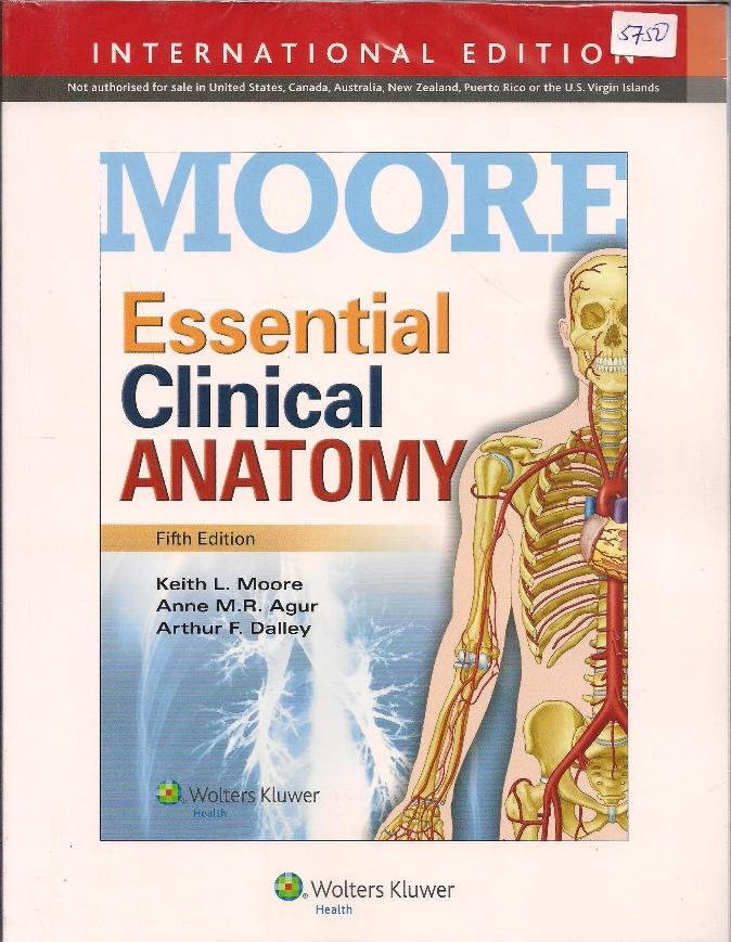 Moore essential Clinical Anatomy 5th Edition | Text Book Centre