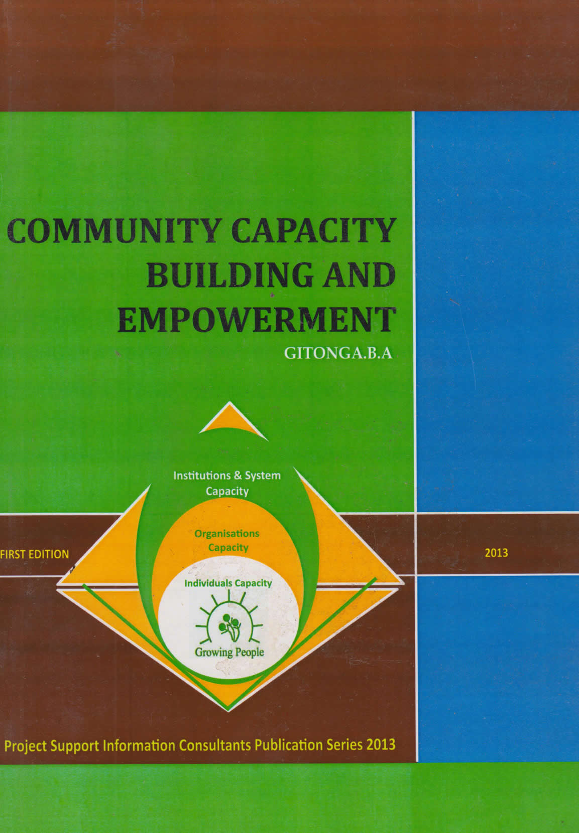 community capacity building and empowerment