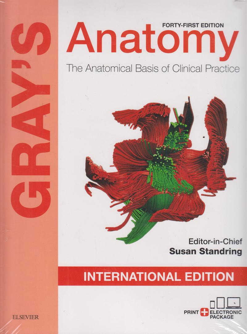 Grays Anatomy 40th Edition Ebook